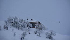 Beytüşşebapta evler ve araçlar kar altında