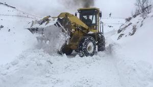 Şırnakta 17 köy ve 5 mezra yolu kardan kapandı