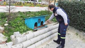 Süleymanpaşada sokak hayvanlarına yeni barınma alanları kuruluyor