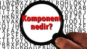 Komponent nedir Komponent ne demek Komponent TDK kelime anlamı