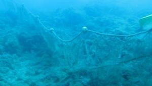 Denizdeki hayalet ağlar, 600 yıl avlanıyor