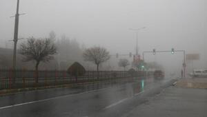 Mardinde yoğun sis