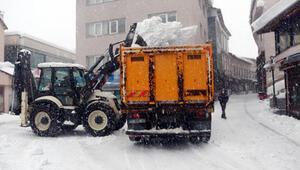 Bitliste karlar kamyonlarla şehir dışına taşınıyor