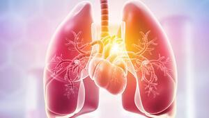 Sigarayı bırakınca vücudunuz bu besinler sayesinde hızla yenileniyor