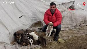 Buzlu sudan kurtardığı yavru köpeğin annesini de 7 yavruyla bulup, sahiplendi
