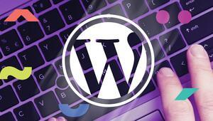 Wordpress altyapısına ilgi büyük
