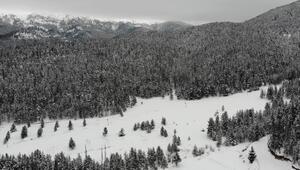 Ilgaz Dağı Yıldıztepe Kayak Merkezi'nde kar turizmcileri sevindirdi