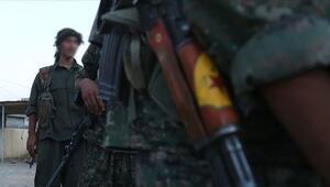 Suriyede terör örgütü YPG/PKKnın kontrolündeki Hol Kampında 15 günde 12 kişi öldürüldü