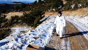 Yaban hayvanlarına 5 bin kuduz aşısı bırakıldı
