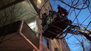 Avcılarda boş binanın balkonunda mahsur kalan kedi için seferber oldular