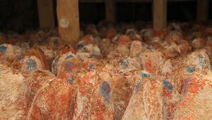 Online peynir atölyesi 1 ayda 50 bin kişiye ulaştı