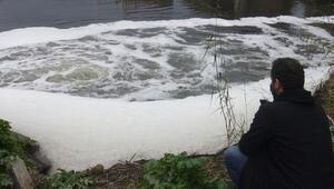 Büyük Menderes Nehrinde korkutan görüntü 4üncü dereceye ulaştı...