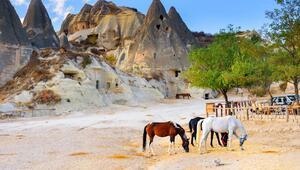 Doğa ve tarihin uyumu: Güzel Atlar Ülkesi' Kapadokya