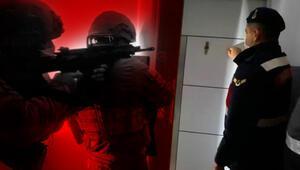 58 ilde dev operasyon: 126 şüpheli yakalandı