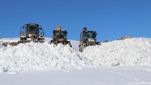 Vanda kar yağışı etkili oldu; 162 yerleşim biriminin yolu kapandı