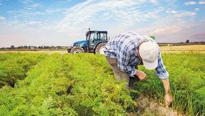 Çiftçilere ara formül