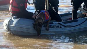 Çanakkalede baraj suyunda kaybolan kişiyi arama çalışmaları devam ediyor