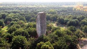 Portakal ağaçları arasında yükselen 2 bin 700 yıllık tarih