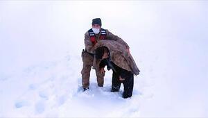 Erzincanda kar ve tipide donma tehlikesi geçiren kişinin yardımına Mehmetçik yetişti