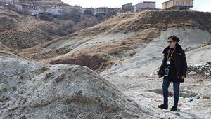 Nevşehirde ayakları bağlı ölü bulunan 10 köpeğin zehirlendiği ortaya çıktı