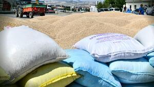 2 bin çiftçiye nohut tohumu