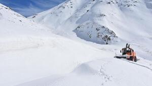 Şırnakta, 3 metrelik kar yığınlarıyla zorlu mücadele