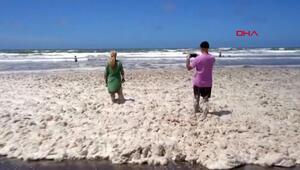 Sabah sahilde gördüklerine inanamadılar Herkes denize akın etti...