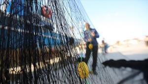 Kısmi hamsi avı yasağı ne zaman son buluyor Tarım ve Orman Bakanı Pakdemirli o tarihi açıkladı