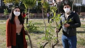 Okul bahçeleri meyve bahçesine dönüşüyor
