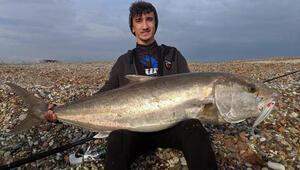 Lise öğrencisinin oltayla tuttuğu 42 kiloluk balık şaşırttı