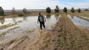 Atık su hattı arızalandı, tarım arazilerine su doldu