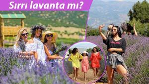 Türkiyenin mor renkli köyünde koronavirüs vakası görülmedi