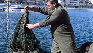 Çevre Yüksek Mühendisi Ozan Deniz: Marmaradaki deniz salyasına kirlilik ve deniz suyu sıcaklığı neden oluyor