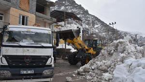 Beytüşşebapta kar yığınları, kamyonlarla ilçe dışına taşınıyor
