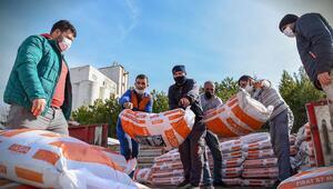 675 çiftçiye 200 ton mercimek tohumu dağıtıldı