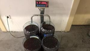 Sarp Gümrük Kapısında, TIRın yakıt deposundan 480 kilo bal çıktı