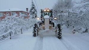 Ordu'da kar etkisi; mahalle yolları kapandı, eğitme ara verildi