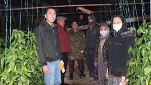 Antalyada üretici don nöbetinde