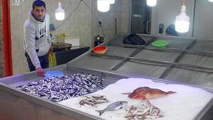 Doğu Karadenizde fırtına balıkçıları vurdu