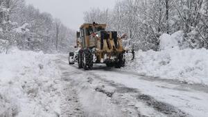 Samsun'da kar nedeniyle kapalı yollar ulaşıma açıldı