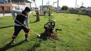 Akdeniz'de parklar ilkbahara hazırlanıyor