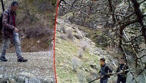 Sayıları artan yaban keçilerinin peşine düşen avcılar, fotokapana yakalandı