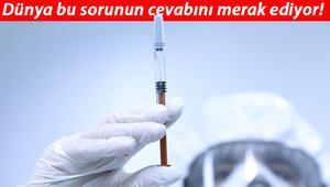 Koronavirüs insanlara nasıl bulaştı DSÖ sözcüsü '4 ihtimal var' diyerek açıkladı