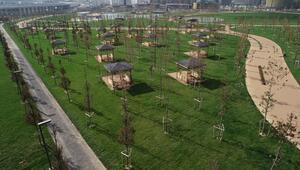 TOKİ, eski stadyum alanlarını Millet Bahçesine dönüştürerek yeşillendirdi