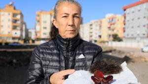 Kadir Şekerin öldürdüğü Özgür Duran'ın annesine saldırı