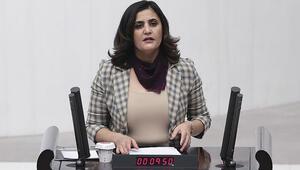 HDP'li Taşdemiri Gara'da gördüğünü söyleyen teröristin ifadesi ortaya çıktı