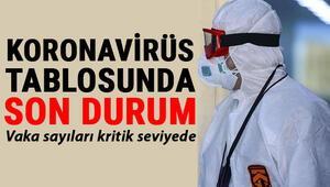 28 Şubat Koronavirüs tablosu son durum: Türkiye corona virüs vaka tablosunda dikkat çeken gelişme... İşte Covid 19 verilerinde son açıklamalar