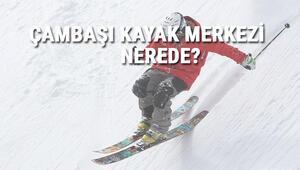 Çambaşı Kayak Merkezi Nerede Ve Nasıl Gidilir Ordu Kayak Merkezi Ücreti, Ortalama Otel Ve Konaklama Fiyatları