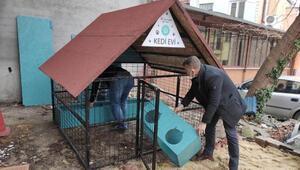 Süleymanpaşa Belediyesinin Kedi Oteli hizmete girdi