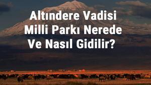 Altındere Vadisi Milli Parkı Nerede Ve Nasıl Gidilir Altındere Vadisi Milli Parkı Konaklama, Kamp, Giriş Ücreti Ve Özellikleri Hakkında Bilgi